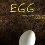 yumurta-egg
